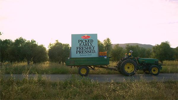 tractor recogiendo aceitunas